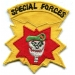Special Forces Skull on Red (1)