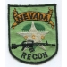 RT Nevada (1)